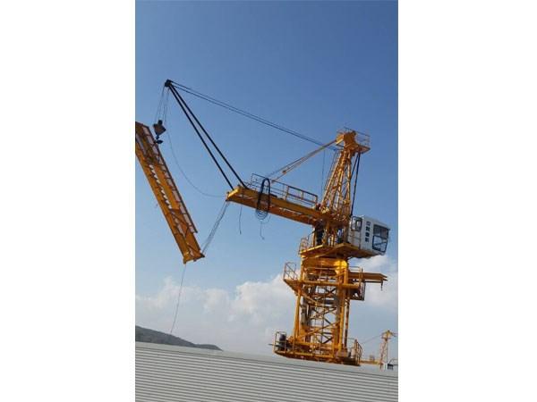 我公司承接了此塔吊拆除项目,由高级工程师现场制作吊具.